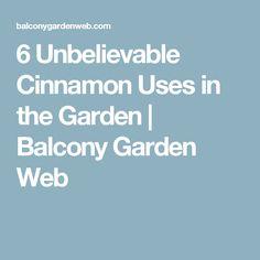 6 Unbelievable Cinnamon Uses in the Garden | Balcony Garden Web