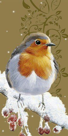 Robin Redbreast Luxury Slim Christmas Cards Pack Christmas cards http://www.amazon.co.uk/dp/B00BMB0I3K/ref=cm_sw_r_pi_dp_x2oGub0RKCW7A Pollyanna Pickering