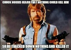 Chuck Norris will find you, nothing.