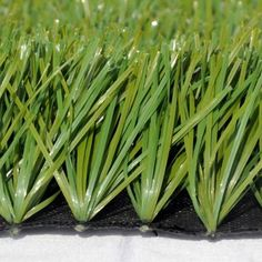 Artificial Grass Garden Art, Home And Garden, Plastic Grass, Art Decor, Vegetables, Cactus, Banner, Food, Essen