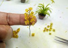 Miniature Orchids, Miniature Plants, Crepe Paper Flowers, Paper Roses, Miniature Greenhouse, Dollhouse Miniature Tutorials, Mini Plants, Mini Things, Clay Flowers