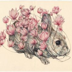 Moleskine illustrations present a fascinating but dark world of blossoms and decay   Creative Boom