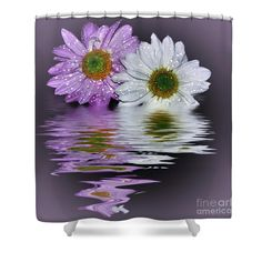 Mums Reflecting in Lilac by Kaye Menner Shower Curtain
