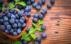 In Stockton, Missouri, Kenney Family Farm is a Destination for Berry-Picking How To Store Blueberries, Growing Blueberries, Highbush Blueberry, High Antioxidant Foods, Blueberry Bushes, Blueberry Farm, Anti Oxidant Foods, Blue Fruits, Blueberry Recipes