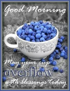 good morning! have a #blessed day and w wonderful week!