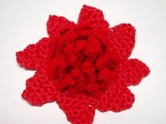 New South Wales Waratah Flower free crochet pattern