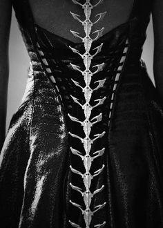 Spinal fashion