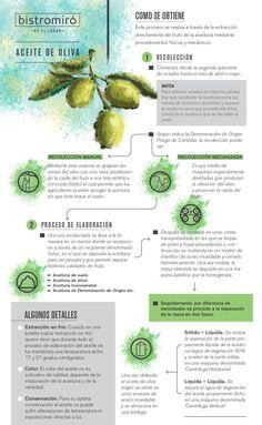 Infografía Como se hace el Aceite de Oliva #aceiteoliva #infobistro