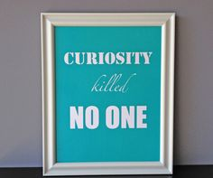 curiosity killed no one, $20.00