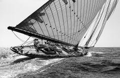 Tuiga. 1909, 15 meters Plan Fife. Faster than wind sailing boat.