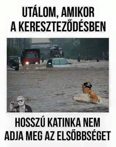 Budapest, Haha, Funny Pictures, Jokes, Comics, Movie Posters, Facebook, Texts, Swim