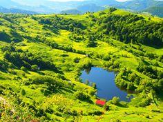 Rosia Montana splendoare de iarba
