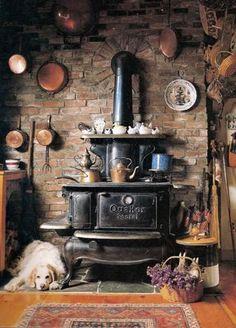 warm stove and warm dog
