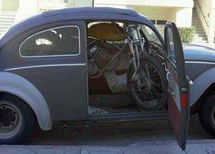 Bug n' a bike. That's all I need...