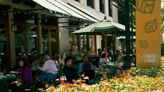 Green Street Restaurant.  Pasadena, CA. The patio is nice place to have lunch.  Order the Dianne Salad, comes with zucchini bread