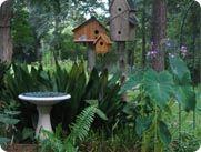 nice arrangement of birdhouses and bath