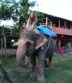 Sexy Woman riding bareback on an Elephant in the Jungle/Sexy Frau reitet ohne Sattel auf einem Elefant im Dschungel . I want to ride an elephant!...my favorite animal