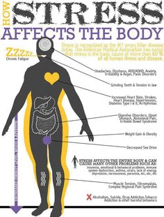 How stress affects the body.