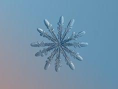 Up close photo of a snowflake