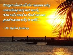 Forget about all the reasons why something may not work. You only need to find one good reason why it will... ~ Dr. Robert Anthony