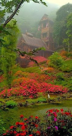 Chapel-in-the-Clouds ~ Highland Heritage, Talamanca Mountains, Costa Rica