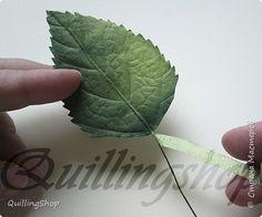 Картина панно рисунок Мастер-класс Бумагопластика Квиллинг Картина Яркие краски уходящего лета + МК Бумага Бумажные полосы фото 17