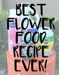 Best diy plant food recipe ever. The four ingredients you need are: Shampoo, Ammonia, 1 can of Beer, and 1 Sleeve of Miracle Grow and a Hose Feeder.