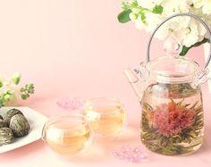 Blooming tea scenery link naar Nederlandstalige website link to Dutch website