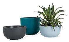 Design Within Reach Planters