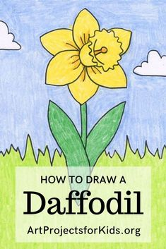 Learn how to draw a Daffodil with this fun and easy art project for kids. Simple step by step tutorial available. art for kids How to Draw a Daffodil Nature Drawing For Kids, Flower Drawing For Kids, Easy Flower Drawings, Easter Drawings, Easy Drawings For Kids, Art For Kids, Drawing Tutorials For Kids, Easy Art Projects, Projects For Kids