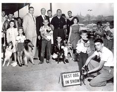 This week's mystery photo, can you guess where in Scranton this dog show took place ...