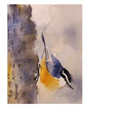 Nuthatch bird painting - Watercolor Painting Print - Animal Art, Nature, Wildlife, Woodland, Ash Grey - ACEO to 9 x 12