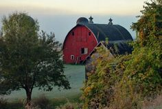 Rural Morning Jigsaw Puzzle