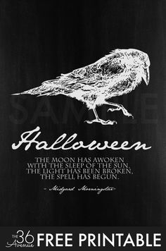Halloween   Halloween Free Printable Set By The36thavenue.com   Halloween  Quotes
