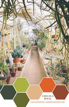 Color Inspiration - Chelsea Bock's Greenhouse
