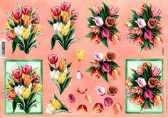 planche 3D tulipe