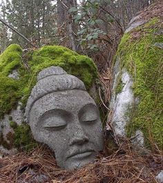 Stone Buddha 60 lb