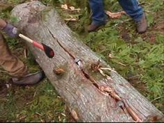 Splitting cedar logs with axe, sledge hammer, and wedges for split rail fence and posts. (sound quality is very poor, may be best to view without sound).  Good tip from video:  start splitting at the skinnier end of the log.