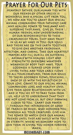 Prayer for our pets...