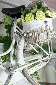 green roses in the bicycle basket