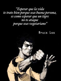 Positive Phrases, Motivational Phrases, Positive Quotes, Inspirational Quotes, Bruce Lee Frases, Bruce Lee Quotes, Spanish Quotes, Karate, Martial Arts