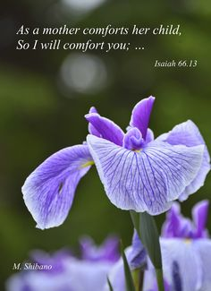 """As a mother comforts her child, so I will comfort you... "" Isaiah 66:13 [Rev. Dr. Masaaki Shibano, Poem and Prayers]"