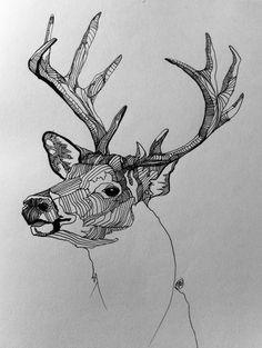 this is one of my favorite doodles, I've been meaning to do another deer for a while!