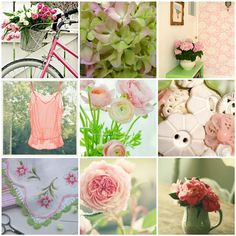 Pink and green   1. Untitled, 2. flowers, green pink white, …   Flickr - Photo Sharing!