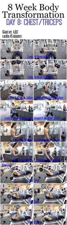Day_8_chest_tricpes_BLOG