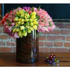 Rainbow Tulips - Medium