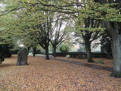 Assistens Kirkegård, Nørrebro, Copenhagen