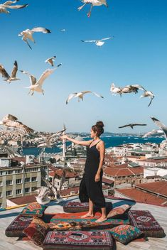 Istanbul Highlights: 7 Unique Experiences You Can't Miss (& 2 to Skip!) Rooftop with Birds Istanbul Turkey Pics, Istanbul Travel, Istanbul City, Around The World In 80 Days, Israel Travel, Travel Oklahoma, Turkey Travel, Highlights, New York Travel