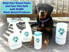 Lapdog Creations: Spring Clean with Pet-Safe Products from #PL360 + GIVEAWAY! #SpringCleaning #sponsored http://www.lapdogcreations.com/2016/03/spring-clean-with-pet-safe-products.html