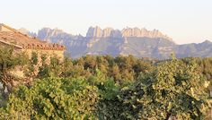Castell de Guardiola   Bed & Breakfast in Barcelona   Alastair Sawday's Special Places to Stay